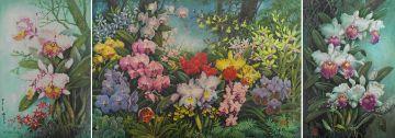 K*** Sia; Orchids, three