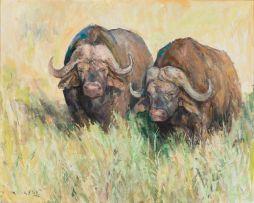 Zakkie Eloff; Two Buffalo