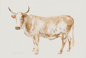 Leigh Voigt; Umngithikazi (Nguni Cow)