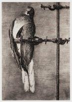 William Kentridge; Bird Catcher