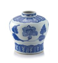 A Chinese blue and white vase, Qing Dynasty, 18th century