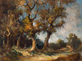 Alexander Rose-Innes; Forest Landscape