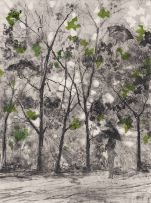 Nicola Taylor; Figure in Forest