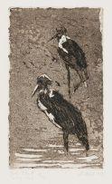 Johannes Blatt; Storks