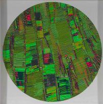 Galia Gluckman; Green Landscape
