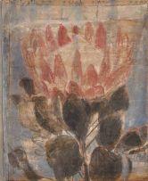 Vivienne Koorland; Small King Protea (Gill)