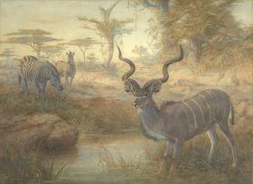 Joseph Wolf; The Greater Kudu and Zebra