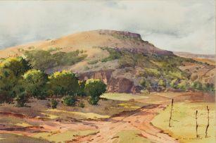 Nils Andersen; Spitskop, Greytown, Natal