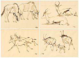 Zakkie Eloff; Wildebeest; Springbok; Red Hartebeest; Roan Antelope, four