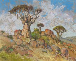 Conrad Theys; Quiver Trees