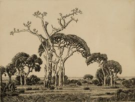 Jacob Hendrik Pierneef; Bushveld, Northern Transvaal