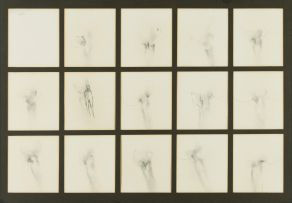 Judith Mason; Transfiguration of a Hand and Man in a Wood