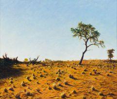 Walter Meyer; Kalahari Landscape with Trees