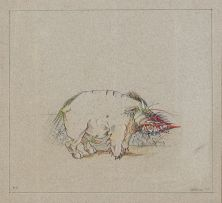 Norman Catherine; Pig