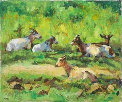 Zakkie Eloff; Goats, Transkei