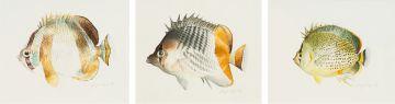 Leigh Voigt; Fish, three