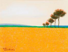 Pieter van der Westhuizen; Orange Landscape