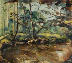 Louis van Heerden; Forest Stream