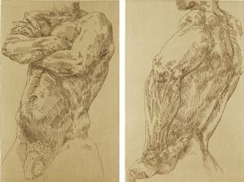 Judy Woodborne; Male I; Male II, two