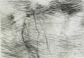 Michael Meyersfeld; Scarification