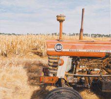 Sipho Ndlovu; 188 Harvesting in Viljoeskroon (sic)