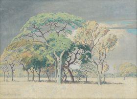 Jacob Hendrik Pierneef; Bushveld
