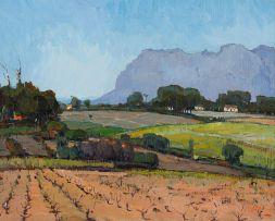 Pieter Wenning; Vineyards, Constantia