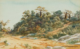 Erich Mayer; Bushveld Landscape with Baobabs