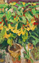George Rowlett; Yellow Datura and Red Pelargoniums