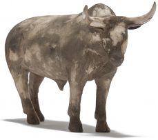 Phumlani Nyawo; Nguni Bull