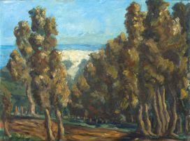Erik Laubscher; View through the Trees