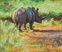 Zakkie Eloff; Rhino