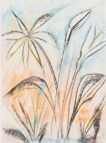 Thijs Nel; Plant Forms