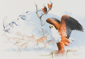 Ingrid Weiersbye; African Fish Eagle and Red Lechwe