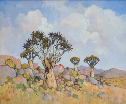 Conrad Theys; Quiver Trees and Summer Clouds, Namaqualand